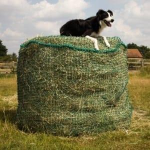 Trickle Net Round Bale Net Slow feeding Hay Net